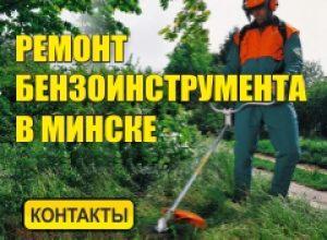 Ремонт бензоинструмента Минск